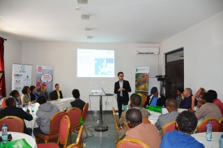 Ethiopia – Growing towards GLOBALG.A.P. Certification