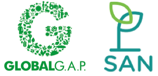 Sustainable Agriculture Network (SAN) and GLOBALG.A.P. Collaborate to Reduce Audit Costs