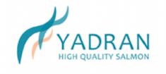 Yadran Salmon Logo