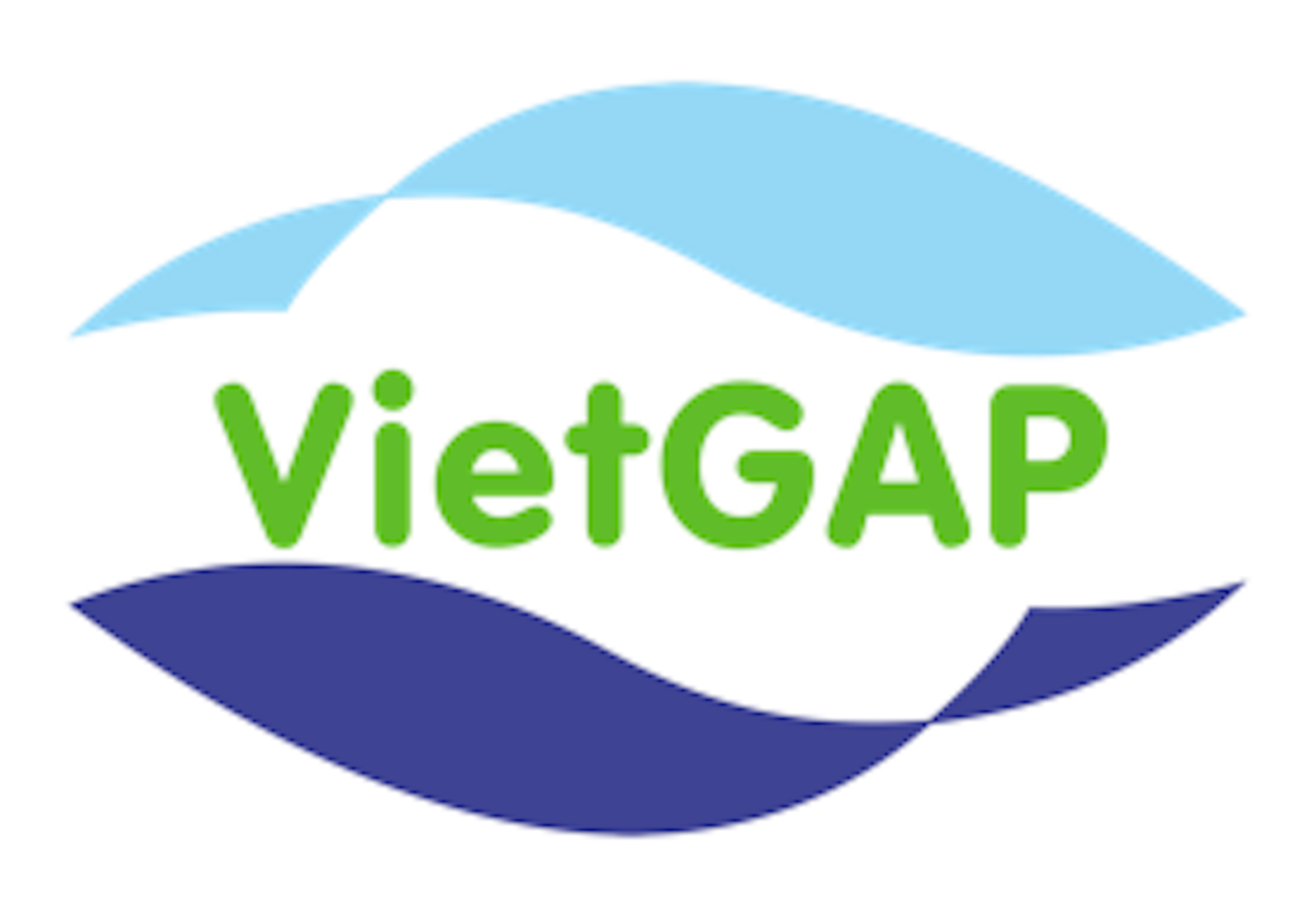 VIetGAP