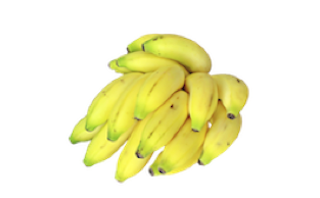 GLOBALG.A.P. Presents its New TR4 Biosecurity Add-on for Bananas