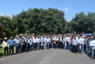 Successful Training for Avocado Producers in Mexico on GLOBALG.A.P. IFA