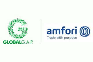 GLOBALG.A.P. Signs MoU with amfori to Support Human Rights Due Diligence