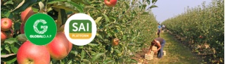 ANUGA 2017: On-Farm Sustainability and Food Safety Align - SAI Platform and GLOBALG.A.P. Offer New Solution