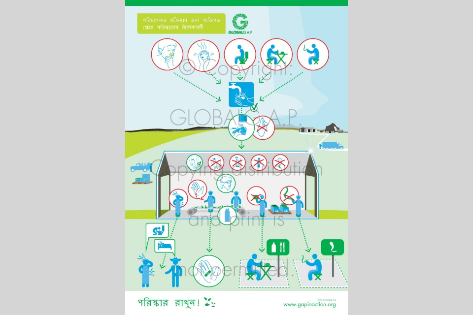 G.A.P. In Action Posters (Bengali