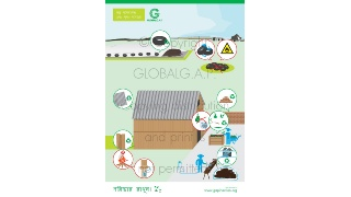 G.A.P. in Action Posters (Bengali)