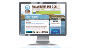 Screenshot-GGN.org