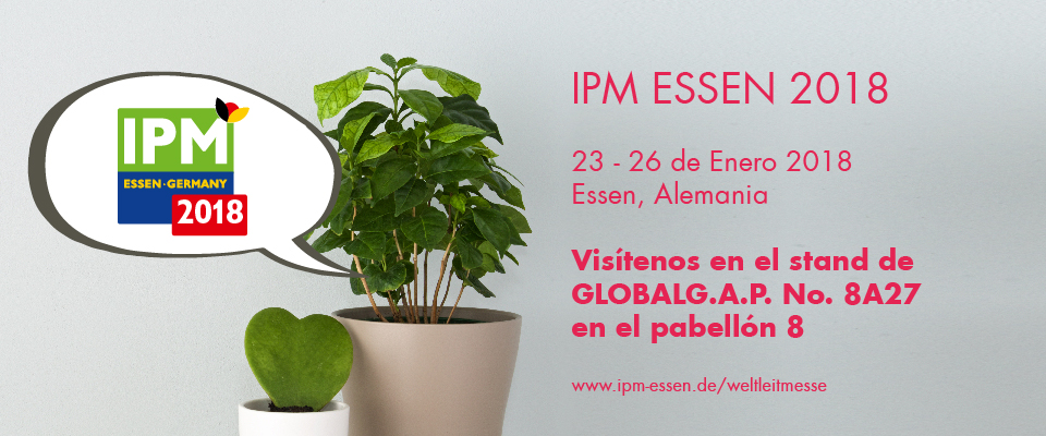 Globalg a p for Essen proveedores